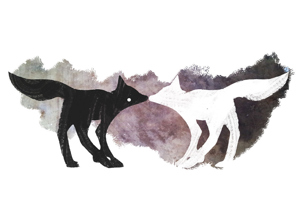 foxes in the forest artwork for t-shirts