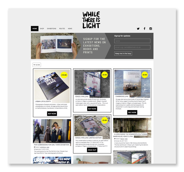 while there is light website design and development