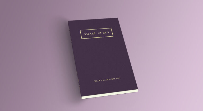 small cures poetry book della hicks-wilson poetry book cover art